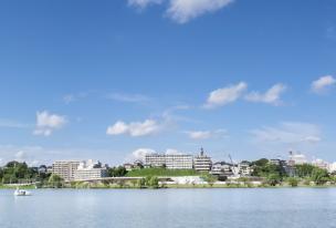 10社の徹底比較でわかる茨城でおすすめの結婚相談所4選