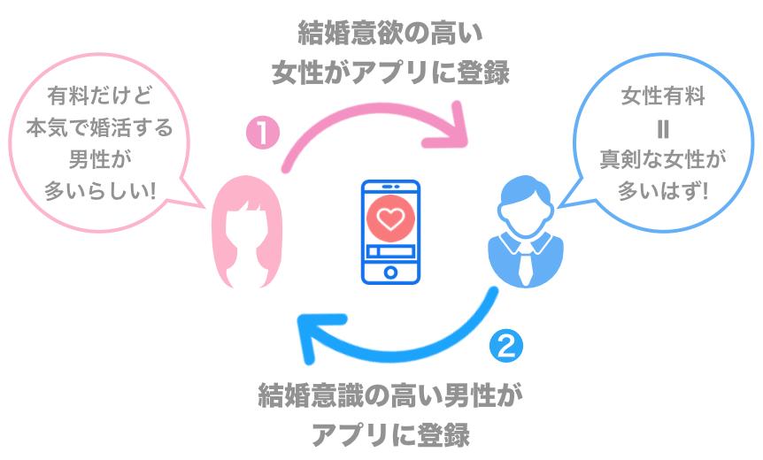女性有料アプリのサイクルの例